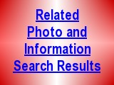 Search for Related Information and Photos